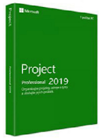 project-professional-2019