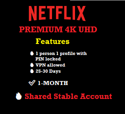 netflix-premium-shared-stable-account-one-month